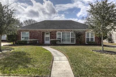 Houston Single Family Home For Sale: 3611 Latma Drive