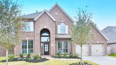 Pearland Single Family Home For Sale: 3447 Golden Cypress Lane