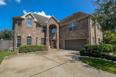 Katy Single Family Home For Sale: 26002 Primrose Springs Court