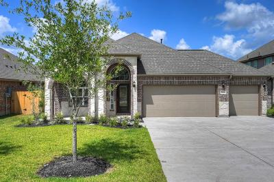 Porter Single Family Home For Sale: 21663 Tea Tree Olive Place