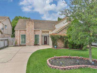 Houston Single Family Home For Sale: 1726 S Kirkwood Road