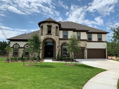 Houston Single Family Home For Sale: 13339 Arbor Villa Lane