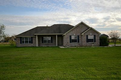 Dayton Single Family Home For Sale: 370 County Road 495