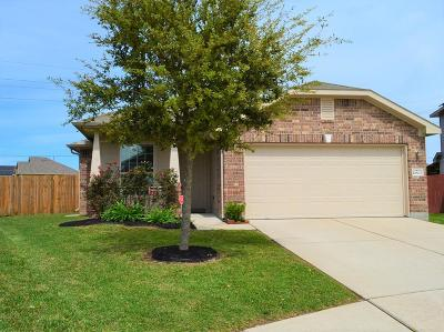 Tomball Single Family Home For Sale: 10802 Harston Drive