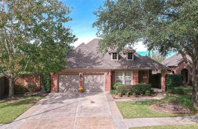 Houston Single Family Home For Sale: 13838 Aspen Cove Drive