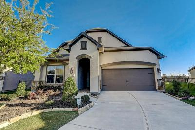 Fort Bend County Single Family Home For Sale: 42 Floral Hills Lane