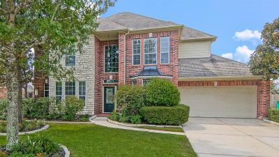 Windrose Single Family Home For Sale: 20307 Pinellas Park Court