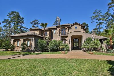 The Woodlands Single Family Home For Sale: 90 N Gary Glen Circle