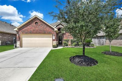 Conroe Single Family Home For Sale: 1010 Forest Haven Court