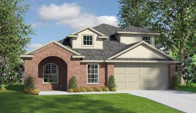 New Caney Single Family Home For Sale: 18215 Elgin Studs Court