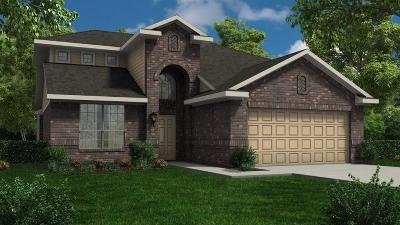 Conroe Single Family Home For Sale: 2593 Wood Park Boulevard