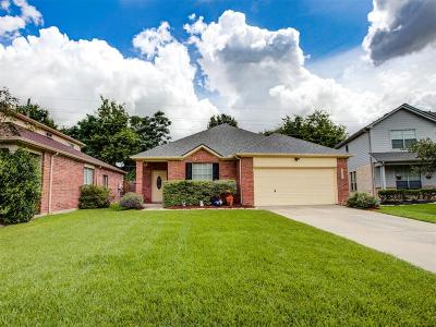 Tomball Single Family Home For Sale: 21906 Willow Shadows Drive