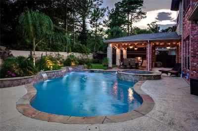 Porter Single Family Home For Sale: 20996 Bull Ridge Circle