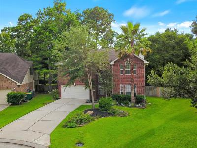 The Woodlands Single Family Home For Sale: 27 Bushell Mill Place
