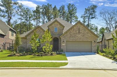 Spring Single Family Home For Sale: 4290 Orchard Pass Drive