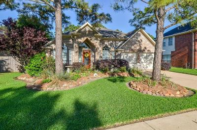 Houston Single Family Home For Sale: 8303 Summer Reef Drive