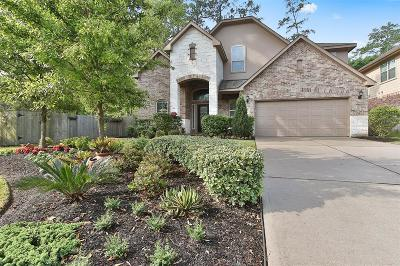 Montgomery Single Family Home For Sale: 246 Overland Trace