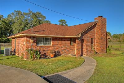 Conroe Single Family Home For Sale: 12826 Hill Drive