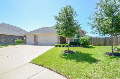 Fort Bend County Single Family Home For Sale: 19539 Keystone Falls Court
