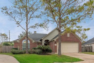 Manvel Single Family Home For Sale: 3103 Summerland Drive