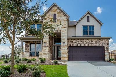 The Woodlands Single Family Home For Sale: 49 Botanical Vista Drive