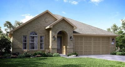 Rosenberg Single Family Home For Sale: 2407 Dovetail Park Lane