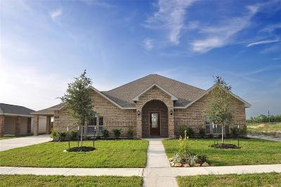 Manvel Single Family Home For Sale: 6715 Austin Cove