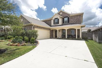 Katy Single Family Home For Sale: 9814 Springfield Ridge Drive
