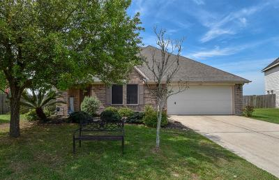 Pearland Single Family Home For Sale: 6511 Hillock Lane