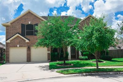 Spring Single Family Home For Sale: 3006 Douglas Creek Lane