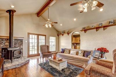 Single Family Home For Sale: 11310 Zamanek Road