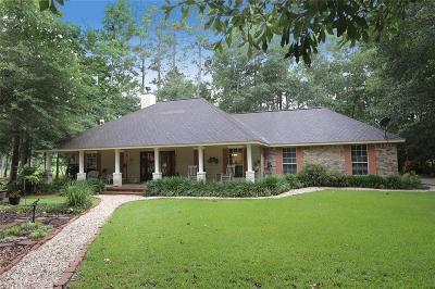 New Caney Single Family Home For Sale: 2418 Catacombs Drive