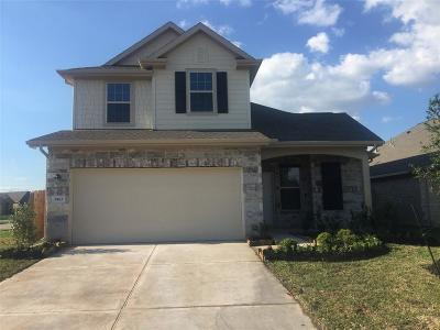 Fort Bend County Single Family Home For Sale: 3562 Fern Footpath Lane