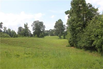 Willis Farm & Ranch For Sale: 14877 Rogers Road