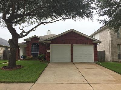 Houston Single Family Home For Sale: 9119 Knightsland Trail