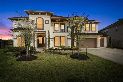League City Single Family Home For Sale: 4703 Isla Canela Lane Lane