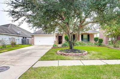 Cypress Single Family Home For Sale: 7126 Hollow Field Lane