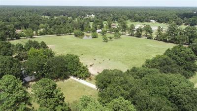 Magnolia Farm & Ranch For Sale: 33021 Wright Road