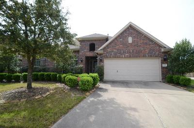 Katy Single Family Home For Sale: 9802 St Romain Drive