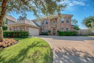 League City Single Family Home For Sale: 2005 Lanyard Pointe Circle