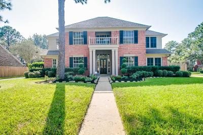 Houston Single Family Home For Sale: 2531 Fairwind Drive