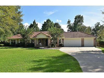 Montgomery Single Family Home For Sale: 18905 Harbor Side Boulevard
