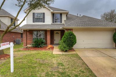 Tomball Single Family Home For Sale: 19419 Nasworthy Drive