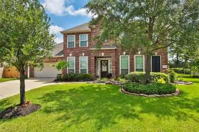 Tomball Single Family Home For Sale: 17502 Warm Winds Drive