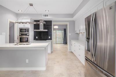 Houston Condo/Townhouse For Sale: 201 Vanderpool Lane #3
