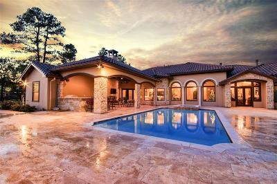 Tomball Single Family Home For Sale: 18 Royal King Road