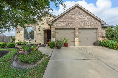 Katy Single Family Home For Sale: 29006 Blue Finch Court