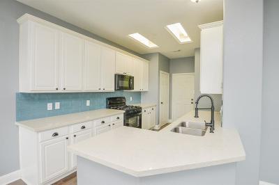Houston Condo/Townhouse For Sale: 8755 Thistlemoor Lane