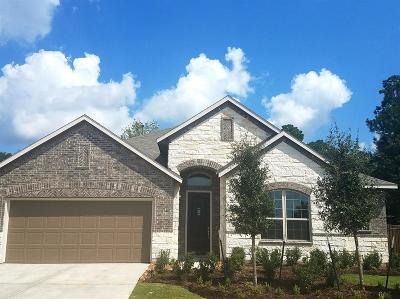 Single Family Home For Sale: 27115 Spanish Wind Court