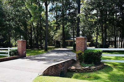 Single Family Home For Sale: 28027 Walnut Creek Court